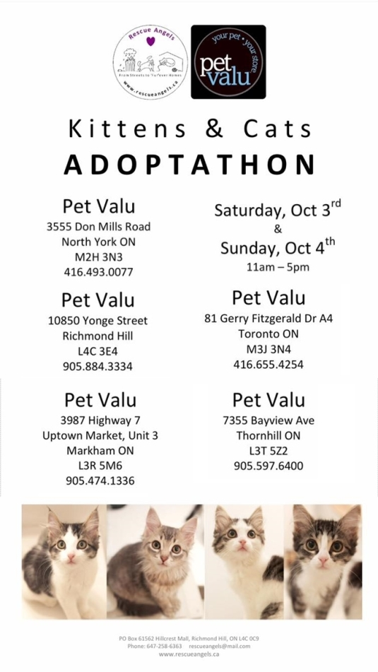 Adoptathon Poster October 2015