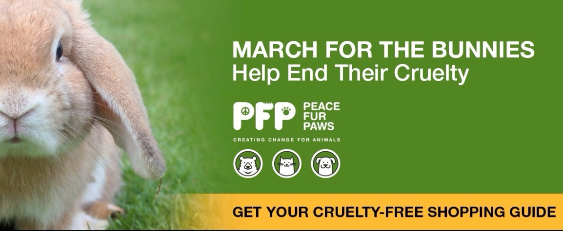 Cruelty Free ShoppingGuide