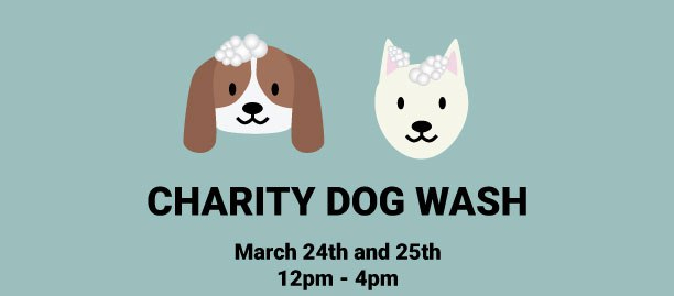 Charity Dog Wash March 24-25th from 12-4pm