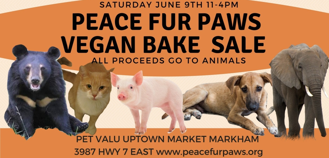 Vegan Bake Sale June 9th 11am-4pm